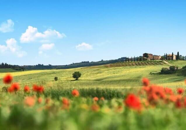 03-VisitChianti-Chianti-Toscana-3893x1694